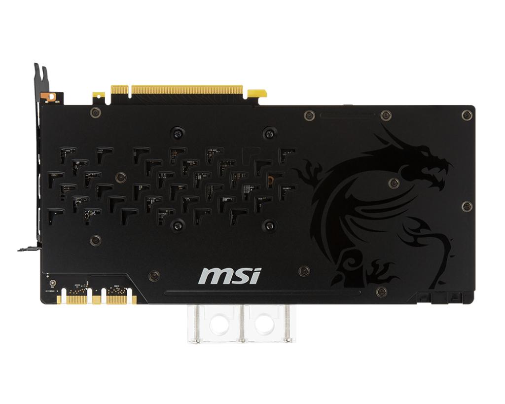 MSICV028275