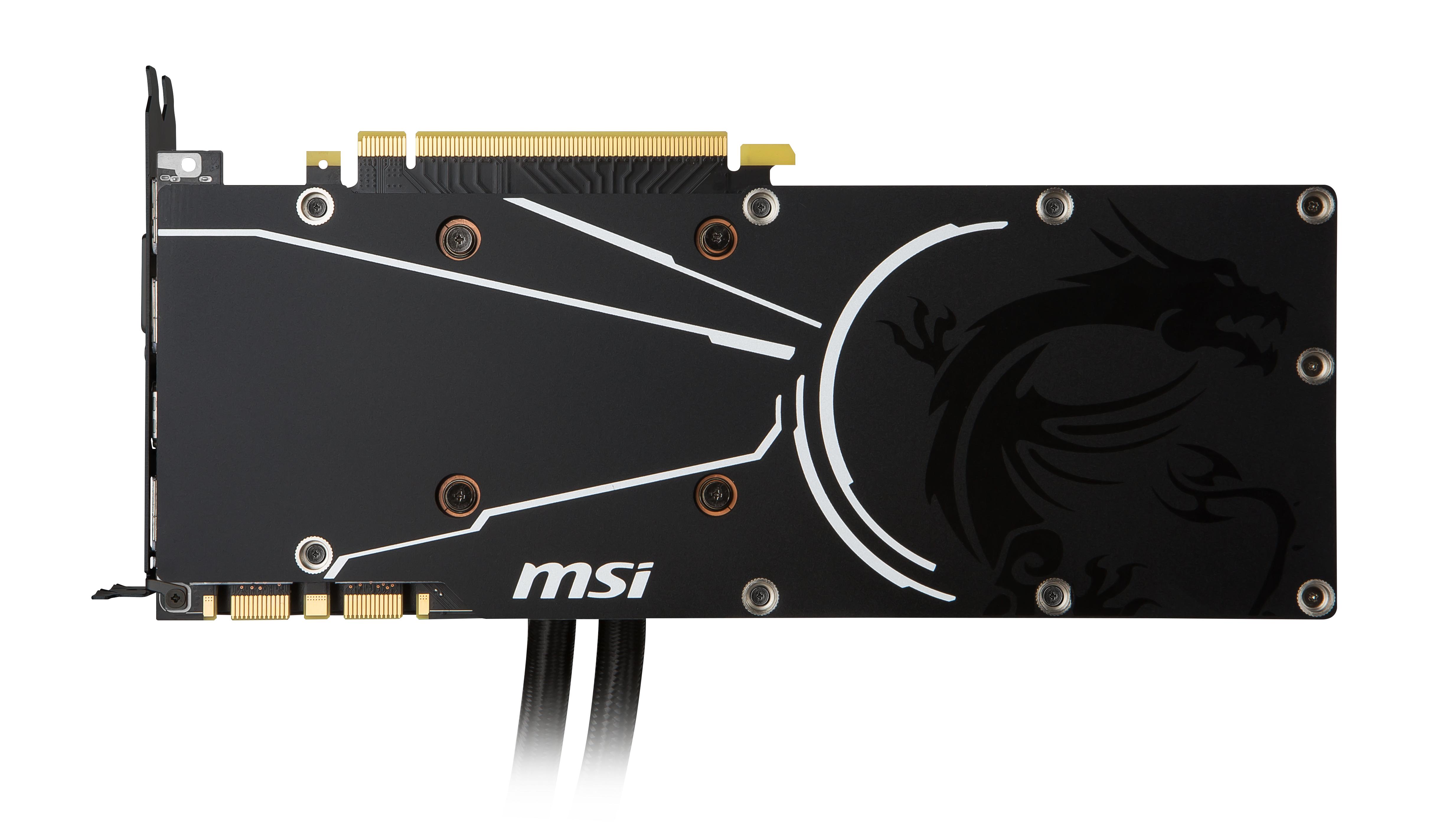 MSICV028274